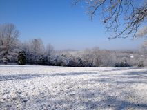 Snöa på bergstoppet och på träden Royaltyfri Bild
