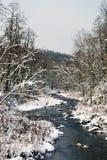 Snöa på floden Royaltyfri Foto
