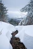 Snöa på träd upp ett berg med floden Arkivfoto