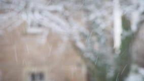 Snöa vintertema med suddig bakgrund arkivfilmer