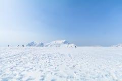 Snöbergen av Tateyama Kurobe som är alpina med lodisar för blå himmel Royaltyfri Bild