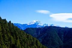Snöberglandskap med skogen Arkivbild
