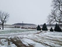 Snödag på lantgården royaltyfria bilder