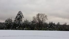 Snödagar i arkansas Arkivfoton