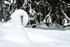 Snödriva på en stolpe Royaltyfri Bild