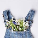 Snödroppeblommabuketten i jeans lurar klänningfacket Idérik orientering för den festliga våren Royaltyfri Foto