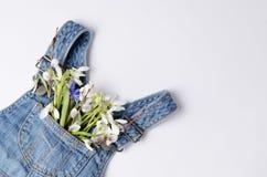 Snödroppeblommabuketten i jeans lurar klänningfacket Idérik orientering för den festliga våren Fotografering för Bildbyråer