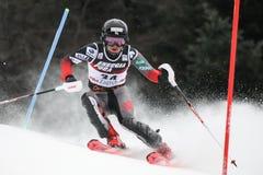 Snödrottningtrofé 2019 - damslalom royaltyfri bild