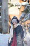 Snödusch Fotografering för Bildbyråer