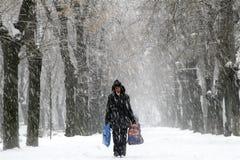 Snöfall - extrem vinter i Rumänien arkivfoto