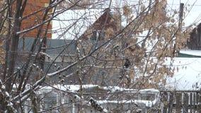 Snöfall i byn för dagskog för rotting molnig vinter för snow för lake lager videofilmer