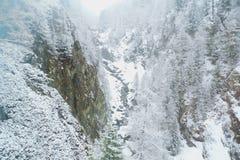 Snöfall i en smal bergklyfta i schweiziska fjällängar arkivbilder