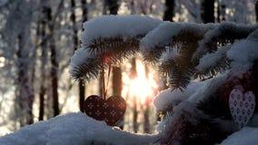 Snöfall i skogen, granfilial med en julleksak svänger i vinden