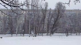 Snöfall i staden arkivfilmer