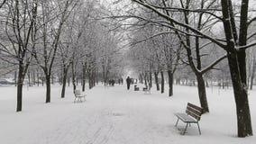 Snöfall i staden stock video