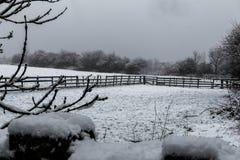 Snöfall på bygd Arkivfoton