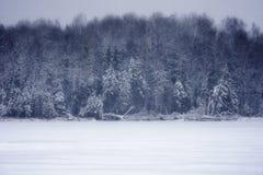 Snöfall på sjön arkivbilder