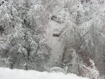 Snöfall, träd och bilar i snö Arkivfoton
