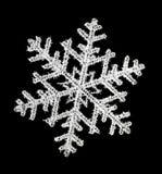 Snöflinga royaltyfri foto