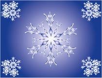 Snöflinga dekor vektor Arkivfoto