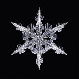 Snöflinga för kristall för naturlig is vektor illustrationer