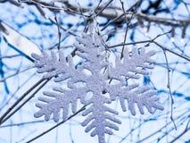Snöflinga som hänger i trädet Arkivfoto
