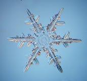 Snöflingakristall Royaltyfri Fotografi
