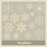 Snöflingasamling Arkivbild