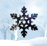 Snöflingasymbol vektor illustrationer