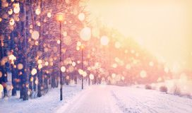Snöflingor på vinter parkerar bakgrund Snowfall parkerar in Royaltyfri Bild