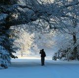 Snöfotografi arkivbild
