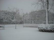 Snögata och träd Arkivbild
