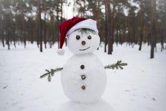 Snögubbe i röd hatt av Santa Claus Fotografering för Bildbyråer