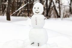 Snögubbe med trädfilialer Arkivfoto