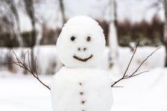 Snögubbe med trädfilialer Royaltyfri Foto