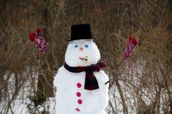 Snögubbe som firar polar virvel Royaltyfri Bild