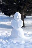 Snögubben Monumentet göras av vit snö Royaltyfria Foton