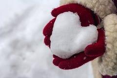 Snöhjärta i hans händer. Arkivbilder