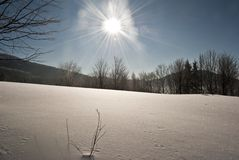 Snöig äng för vinter Royaltyfri Fotografi