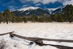 Snöig äng och berg arkivfoto