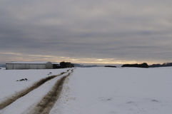 snöig öde väg Arkivfoto