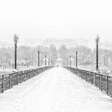 Snöig överbrygga Royaltyfria Bilder