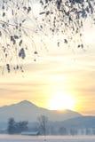 Snöig alpin fältsolnedgång II Royaltyfria Bilder