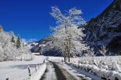 snöig alpin väg Arkivfoto