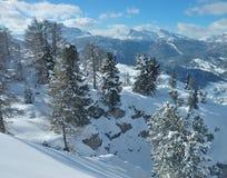 snöig alpsberg Arkivbilder