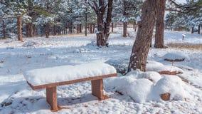Snöig bänk Royaltyfri Bild