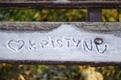 snöig bänkinskrift Royaltyfri Bild