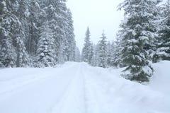 snöig bana backroad winter Arkivfoton