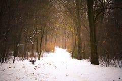 Snöig bana i vinter Fotografering för Bildbyråer