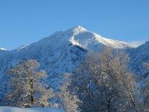 snöig berg Royaltyfria Foton